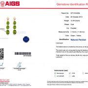AIGS Gemstone Identification Report