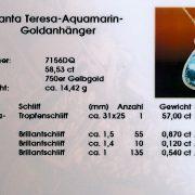 Santa Teresa Aquamarin Goldanhänger 58,53ct
